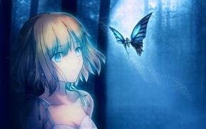 Picture girl, night, the moon, butterfly, art, tsuki no sango