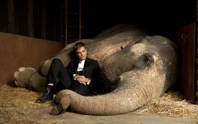 Wallpaper actor, vampire, Twilight, Male, Robert Pattinson, Water for elephants, the elephant, Edward Cullen