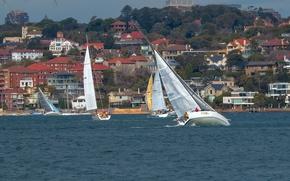 Picture building, yachts, Australia, Sydney, Australia, Sydney, regatta, Sydney Harbour, Sydney Cove