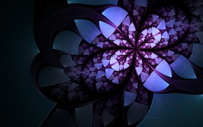 Wallpaper white, flower, purple, abstraction, the dark background