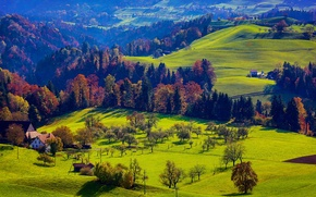 Picture autumn, forest, grass, trees, mountains, home