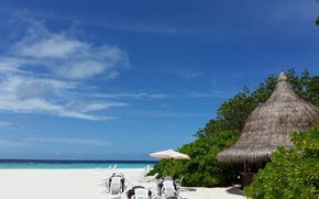 Picture beach, the sky, the ocean, stay, island, the Maldives