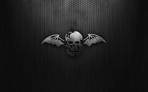 Picture mesh, black, wings, Skull
