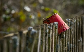 Picture background, the fence, bucket