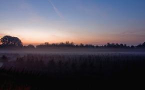Wallpaper field, fog, the moon