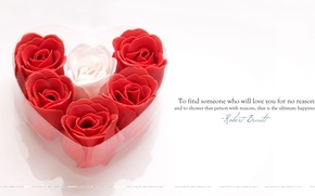 Wallpaper love, roses, Valentine's day, heart