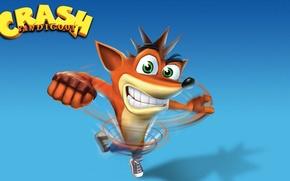 Picture Fox, Crash, blue background, Crash Bandicoot