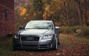 Picture autumn, Audi, Audi, foliage, universal