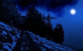 Picture winter, forest, the sky, snow, trees, nature, fog, darkness, the moon, mountain, stars, silhouette, dark, …