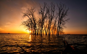 Picture the sky, the sun, trees, sunset, lake, glow
