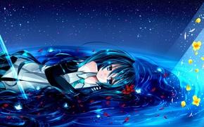 Picture the sky, water, light, flowers, stars, lies, Hatsune Miku, Vocaloid