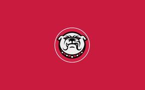 Picture red, color, bulldog, sb nation