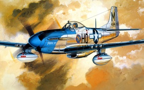 Picture figure, Mustang, art, North American, P-51D