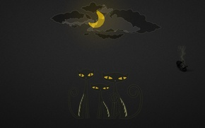 Picture clouds, night, the moon, UFO, Cats
