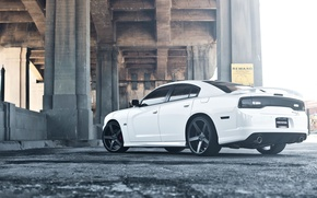 Picture white, bridge, white, Dodge, bridge, dodge, charger, srt8, SRT, the charger, wing, exhaust pipe, tail ...