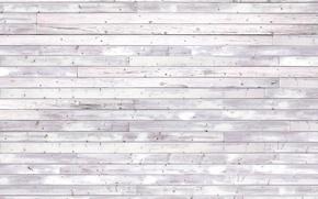 Wallpaper wall, white, wooden floor