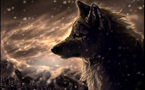 Picture forest, snow, mountains, Wolf, Blizzard, art, scars, wolfroad, two steps from hell