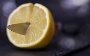 Wallpaper macro, lemon, knife