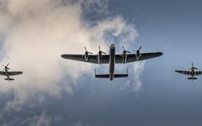 Wallpaper the sky, the plane, flight