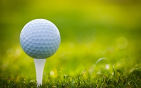 Picture grass, lawn, ball, Golf, stand