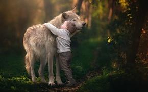Picture wolf, boy, friendship