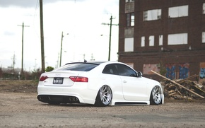 Picture Audi, Audi, white, rear, low, stance