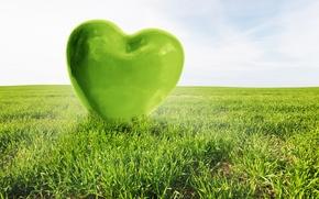 Picture love, green, heart, love, field, heart