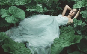 Picture forest, leaves, girl, plants, dress, lies, Princess, Wallpaper from lolita777