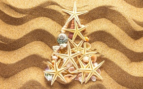 Picture sand, decoration, tree, New Year, shell, Christmas, beach, tree, sand, seashells