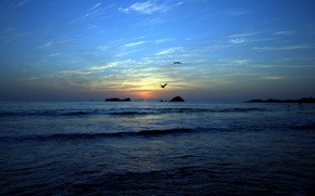 Picture sea, beach, Islands, sunset, birds
