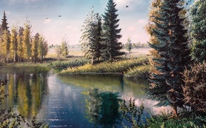 Picture forest, trees, birds, nature, lake