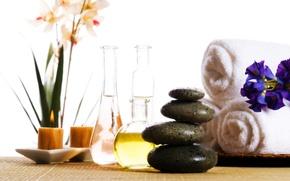 Picture flowers, oil, towel, flowers, Spa, Spa, towel, oil