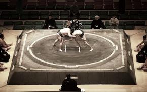 Picture sport, fight, sumo