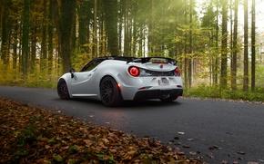 Wallpaper Alfa Romeo, Alfa Romeo, Pogea Racing