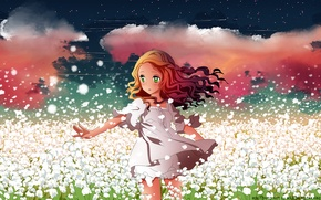 Picture flowers, art, anime, petals, girl, field, h2so4, the sky, kuzakawe maron, stars, clouds