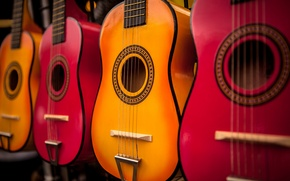 Picture colored, guitar, musical instrument