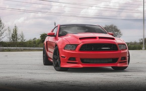 Picture Mustang, Ford, Shelby, Turbo, Wheels, Twin, Incurve, LP-5
