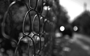 Picture macro, the fence, black and white