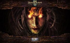 Picture Blizzard, Starcraft 2, Heart of The Swarm, StarCraft