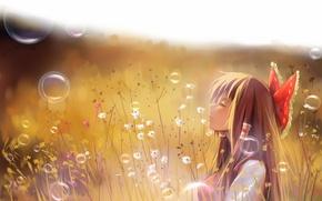 Picture field, grass, girl, bubbles, art, profile, touhou, hakurei reimu, a luo