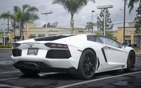 Picture Lamborghini, Cars, Beach, White, LP700-4, Aventador, Newport