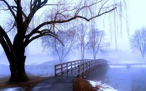 Wallpaper fog, bridge, autumn