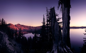 Picture trees, sunset, mountains, lake