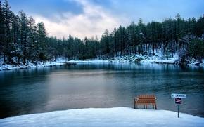 Picture Winter, Lake, Snow, Bench, Forest, USA, Arizona, Prescott, Goldwater Lake