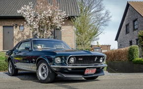 Picture Mustang, Ford, 1969, house
