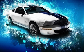 Wallpaper Shelby, GT500, machine, Mustang, Ford