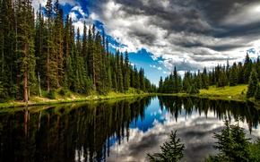 Picture forest, summer, water, clouds, trees, lake, reflection