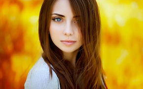 Picture girl, model, portrait, beauty, brown hair