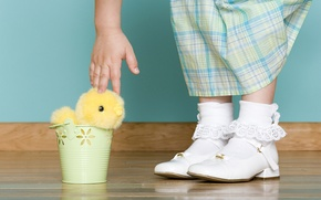 Picture holiday, hand, Easter, lace, chicken, child, Easter, socks, bucket