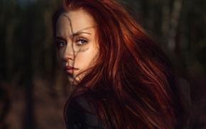 Wallpaper Russia, look, Sunny Kate, redhead, George Chernyadev, sunlight
